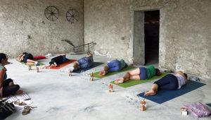 yogawine barberis
